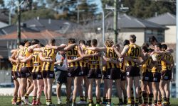 An update on the Box Hill/Hawthorn alignment