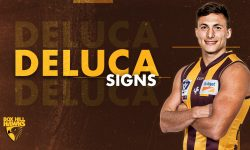Deluca joins the Hawks