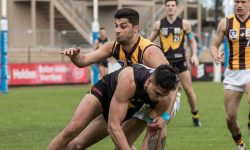 Box Hill's practice match schedule confirmed