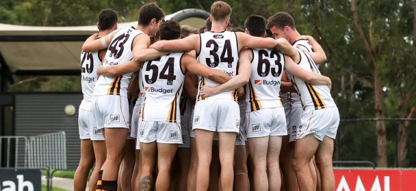 Match report: Box Hill sails to victory with pre-season win over Casey