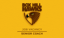 Job Vacancy – Senior Coach