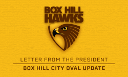 Sill: Box Hill City Oval Update