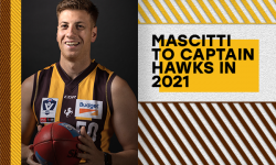 Mascitti To Lead Hawks in 2021