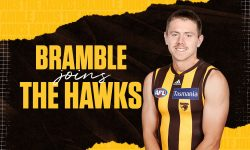 Hawks add Bramble to the mix